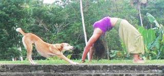 Ifieleele Yoga wonders